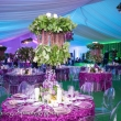 Fisher Island Event Rentals