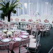 Party Rentals Palm Beach