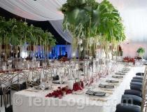 wedding-tent-rental-tampa-03