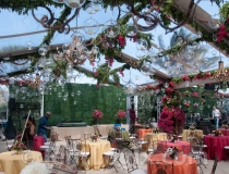 clear-wedding-tent-rental-05
