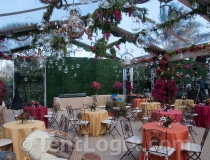 clear-wedding-tent-rental-06