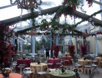 clear-wedding-tent-rental-07