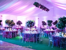 Fisher Island Tent Rental