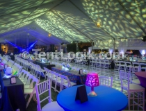 Party Rentals, Tampa FL