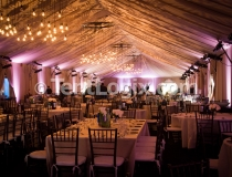 Fort Lauderdale Tents