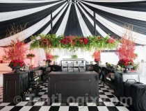 wedding-tent-rental-tampa-01