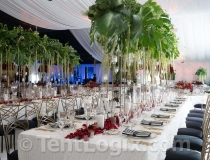 wedding-tent-rental-tampa-03